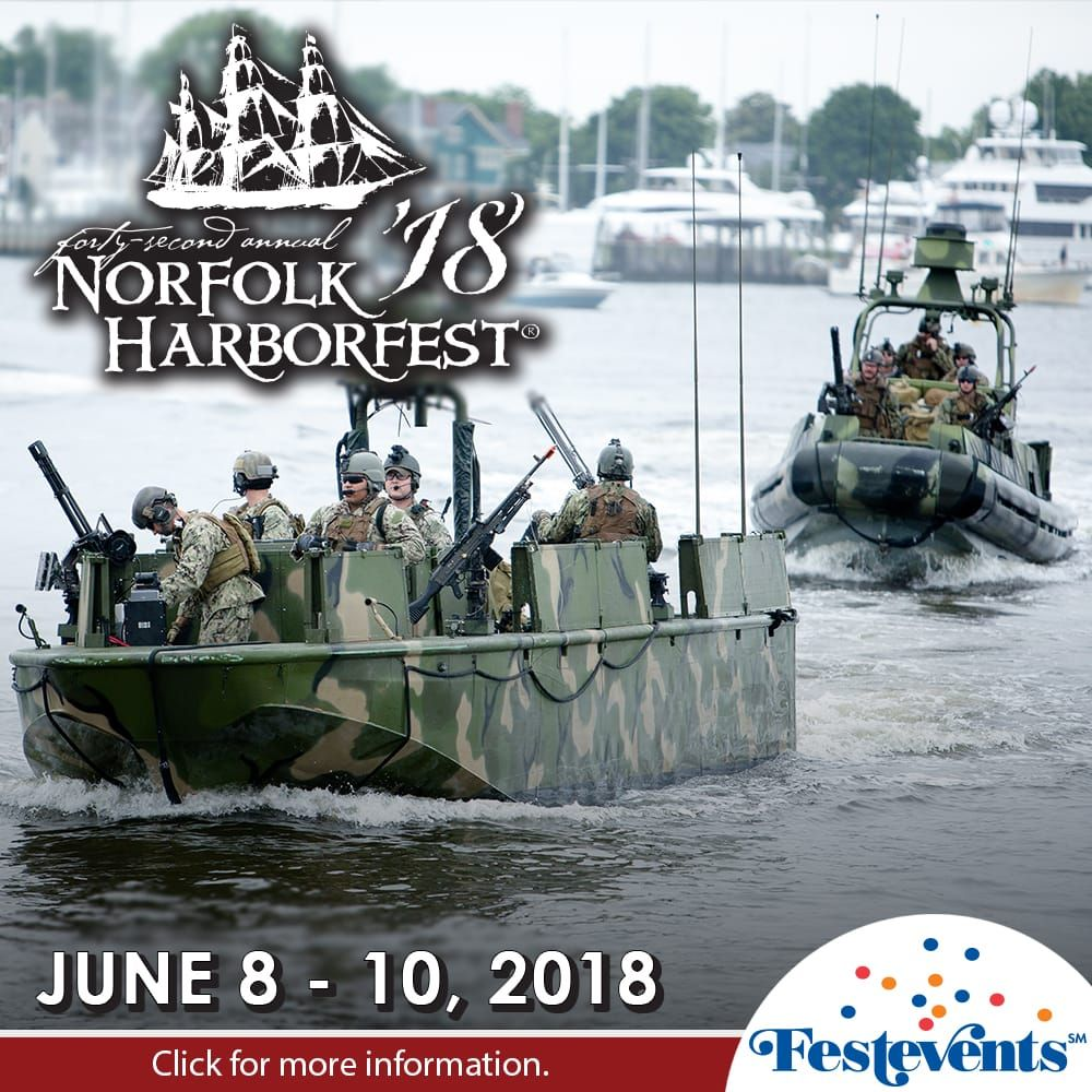 Military on the lookout during Harborfest